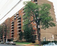 1 MONTH FREE -  BEST PRICES IN SOUTH END - LARGE RENO APT