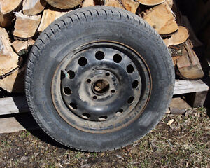 Four Ford Focus winter tires on rims