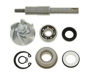 Reparaturkit Wasserpumpe für Honda Pantheon 4T FES 125i 03- JF12