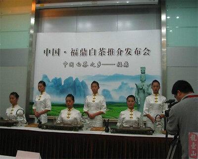 Promotion! 357g White Tea, Organic Baimudan tea, Fuding White Peony