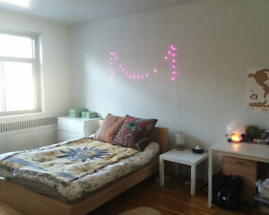 Summer Sublet (May-August)
