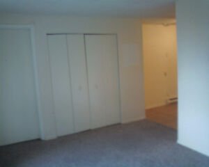 Available Immediately! One Bedroom All Inclusive !! Windsor Region Ontario image 4