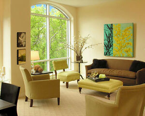 BEAUTIFUL LARGE EXECUTIVE APARTMENTS ON SPRING GARDEN ROAD