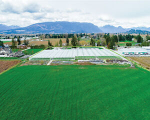 FOR SALE! 22.1 ACRES  |  GREENHOUSES | 19014 OLD DEWDNENEY TRUNK