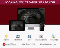 Professional Web Design-Ecommerce Development - Start from $499