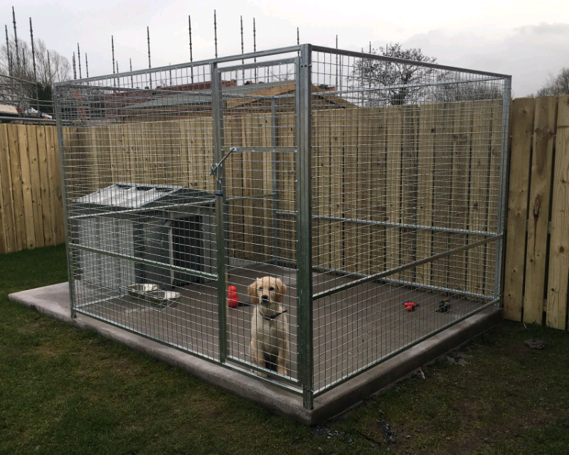 Dog Pens In Armagh County Armagh Gumtree