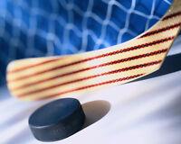 Low level to average adult hockey program