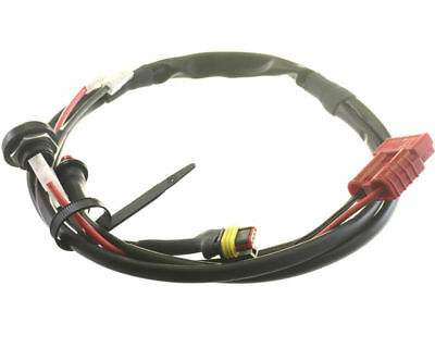 Iame X30 Cable Harness / Wiring Loom With Buttons  2018 - NextKarting