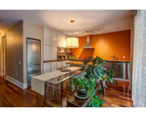AMAZING Furnished Appartment Next to Lachine Canal!
