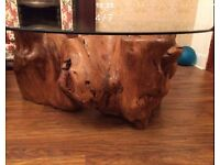 Unique Tree Root Table