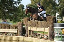 TIM ELLIS EVENTING CLINIC - BALDIVIS Baldivis Rockingham Area Preview