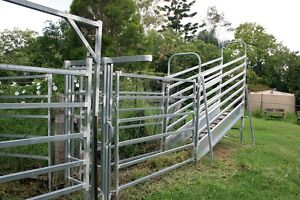 Cattle Yard and accessories Marburg Ipswich City Preview