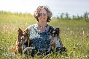 1 on 1 Dog Training - Edmonton Dog Trainer
