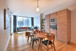Furnished Apartment Appartement DWTN Short or Long term MUST SEE