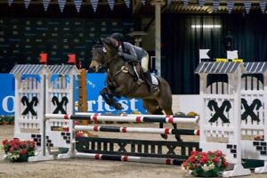Ever wanted to try jumping? Need show prep? Clinic time!