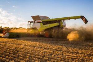 Farm workers for #grainharvest