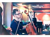Session Cellist Available for Live and Studio