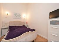 HIGHBURY NEW PARK, N5: LIGHT AND SPACIOUS OPEN PLAN 1 BEDROOM FLAT, MODERN BATHROOM, PERIOD PROPERTY