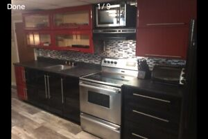 Fully Furnished One Bedroom (Heat & Lights included)