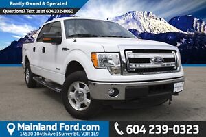 2014 Ford F-150 XLT NO ACCIDENTS, LOW KM'S