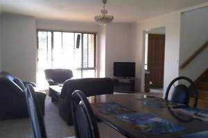 furnished room walk to UQ, PA close to bus.train and shops Annerley Brisbane South West Preview