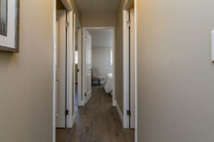 Tour a Luxuriously Renovated 2 Bedroom Apartment - Amherstiew