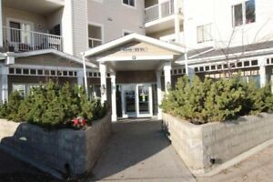 2 Bed 2 Bath Condo in Desirable Stony Plain!