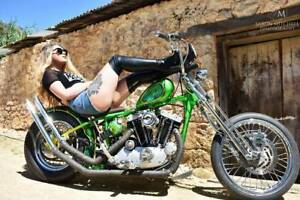 Harley Custom Rigid Chopper Ironhead Sportster