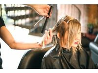 Hair Stylist - Fully qualified OR Apprentice level. Hourly rate PLUS commission!
