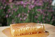 Fresh Raw Honey & Honeycomb Straight From The Beekeeper Regents Park Logan Area Preview