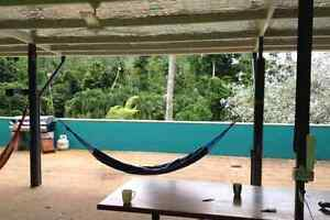 Room for rent Mission Beach Mission Beach Cassowary Coast Preview