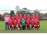Adult Mens Goalkeeper Wanted - Red Star Woking FC