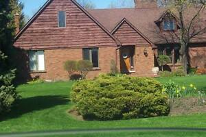 Grass cutting only or total property maintenace London Ontario image 8
