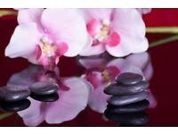 Independent professional oriental massage in Warren Street Euston London