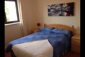 Double room for rent in rural location