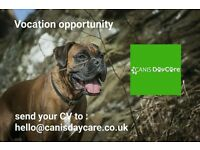 Dog Handler / Carer Positions (Full and Part Time)