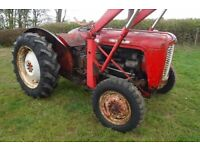 MASSEY FERGUSON 35 1962 2 OWNER ROAD REG FULLY WORKING CAN DELIVER SEE VIDEO