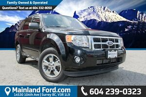 2009 Ford Escape XLT Automatic LOCAL, NO ACCIDENTS