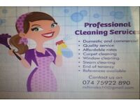 Proffesional cleaner