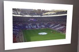 "Brand new Sheffield Wednesday FC canvas 16x12"""