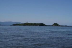 Deux Iles à vendre : île du cheval et île ronde (Montmagny)