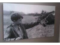 REDUCED! Brand new beatiful Kes canvas 24x16 inches was £38 now only £18!