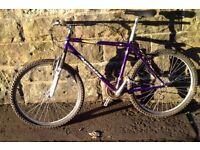 """Apollo bike, 21 speeds, 19"""" frame, ready to go"""