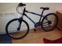 giant bike for sale £60 ono