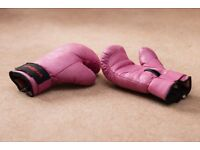 Arena Boxing Gloves and pads