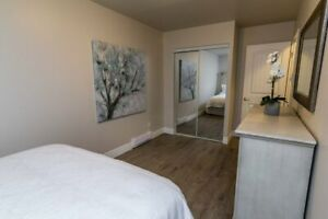 Professionally Renovated 3 Bedroom Amherstview Townhouse