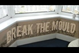 Damp and black mould treatment, plastering experts