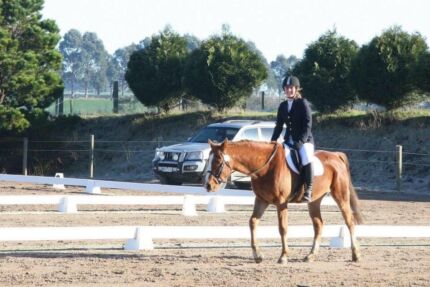 FIRENZA PARK - Horse Riding Lessons Cardinia Area Preview