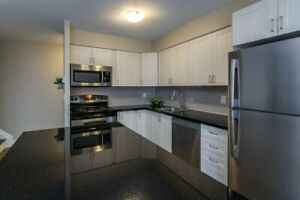 Fresh and Updated  2 Bedroom Apartment in Kingston West