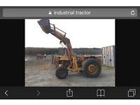 Industrial loader
